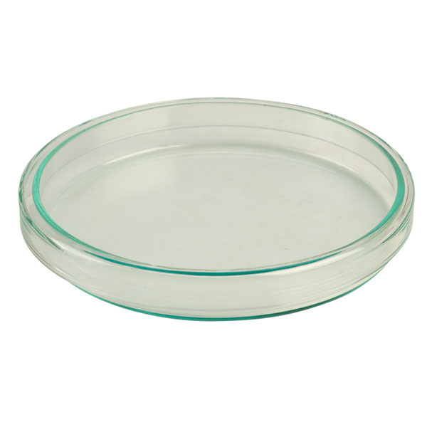 Image of Rapid Petri Dishes 100 x 15mm - Pack of 18