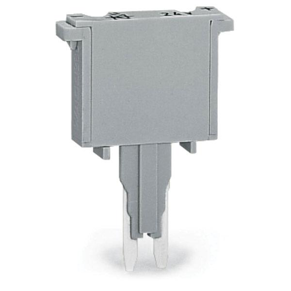 WAGO 280-850 5mm Fuse Component Plug Grey