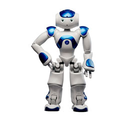 NAO Robot Academic Edition Blue
