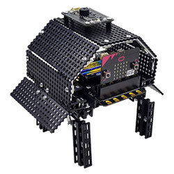 BinaryBots Totem Tortoise Programmable Robot with Sensors for micro:bit